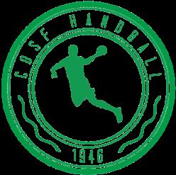 Saint-Fons Handball
